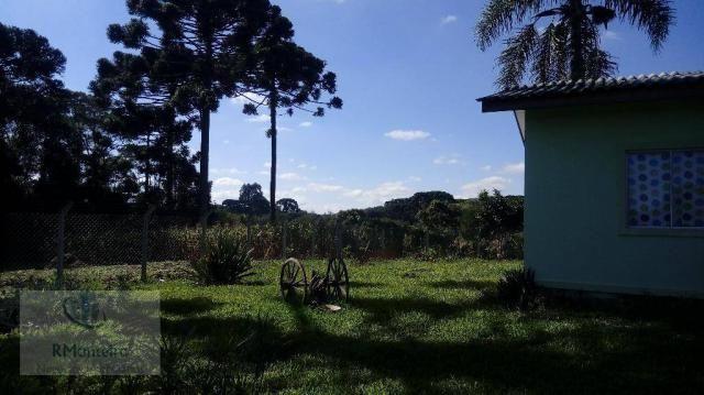 Chácara rural à venda, Campo Largo da Roseira, São José dos Pinhais. - Foto 5