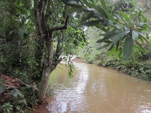 Propriedade de 5.000 m² em Cabeça Quebrada, Guarapari - Foto 19