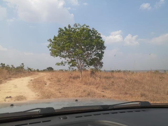 Fazenda venda ou arrendamento lavoura paranatinga - Foto 8