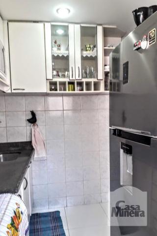 Apartamento à venda com 2 dormitórios em Sagrada família, Belo horizonte cod:251143 - Foto 10