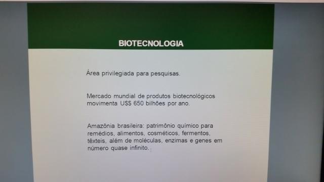 Fazenda na amazônia 913.000 hectares - Foto 18