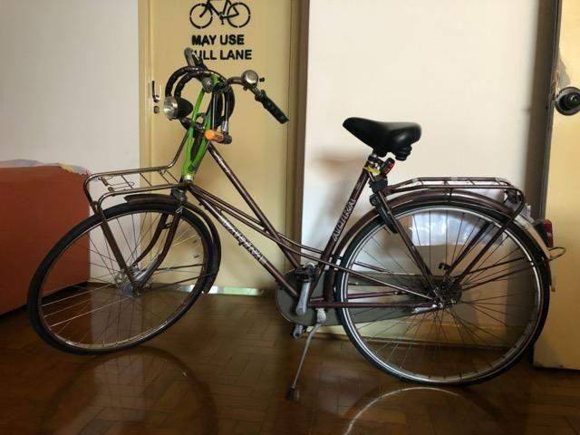 Bicicleta Holandesa Altra