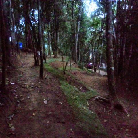 Lindo Terreno em meio à Natureza no bairro Fazenda - Foto 2