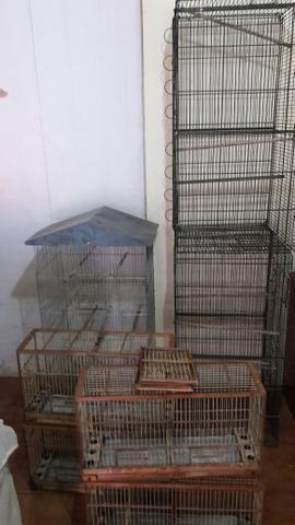 Vende se gaiolas - Foto 2