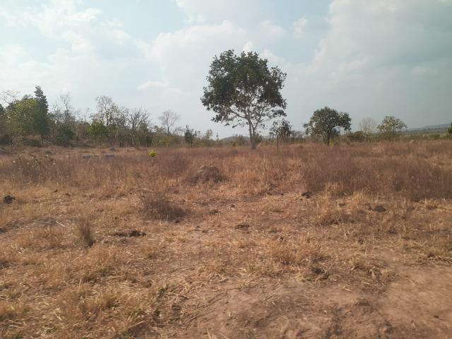 Fazenda venda ou arrendamento lavoura paranatinga - Foto 9