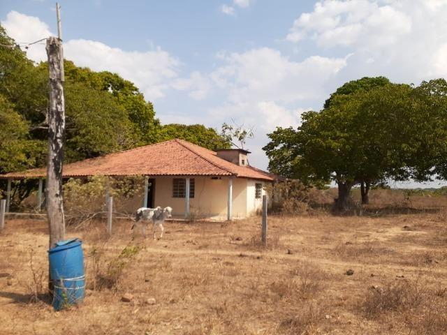 Fazenda venda ou arrendamento lavoura paranatinga - Foto 11