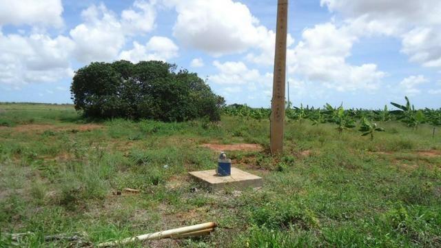 Vendo Fazenda com 250 ha, no Município de Touros - Foto 7