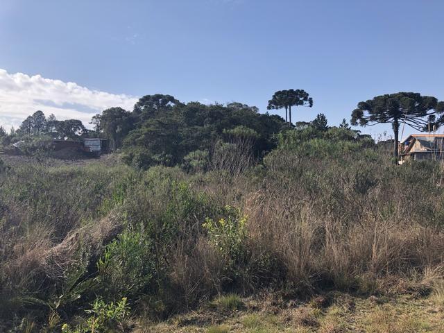 Terreno Condomínio Sol Nascente - Tijucas do Sul - Foto 4