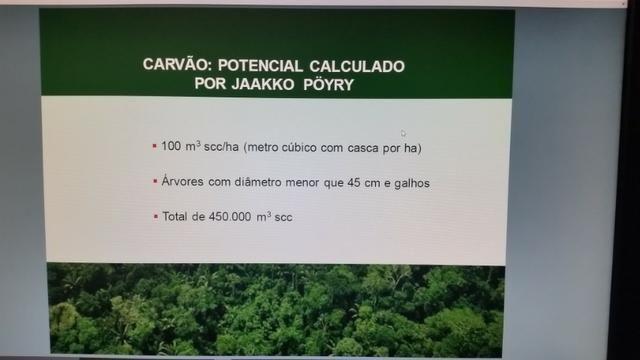 Fazenda na amazônia 913.000 hectares - Foto 20