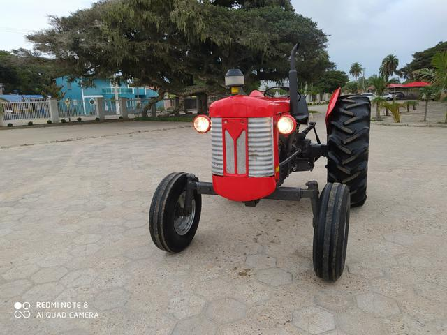 Trator Massey Ferguson 65x - Foto 4
