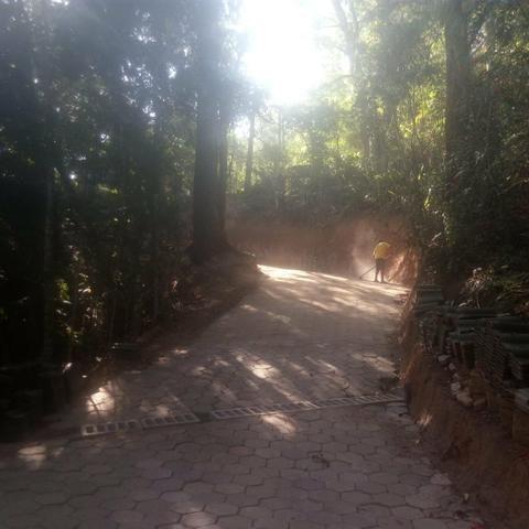 Lindo Terreno em meio à Natureza no bairro Fazenda - Foto 4