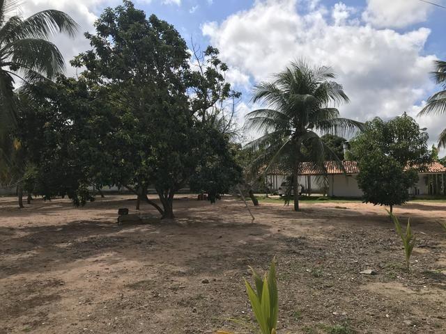 Vendo Área / Terreno na BR 101 Com 10.000m² Próx a Volvo, Baldessar Rondon e Rio Grandense - Foto 12