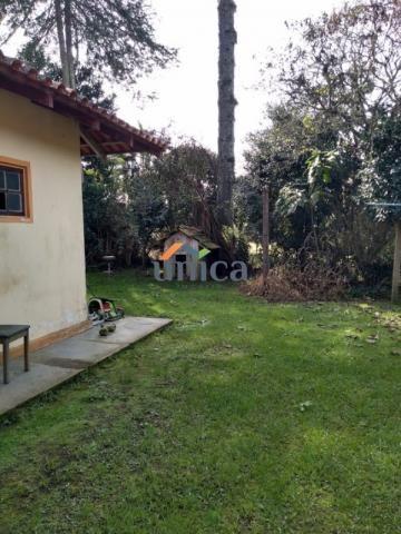 Casa, campo alegre - Foto 12
