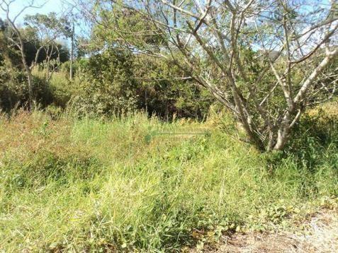 Terreno rural à venda, Venda Nova, Teresópolis - TE0060. - Foto 2