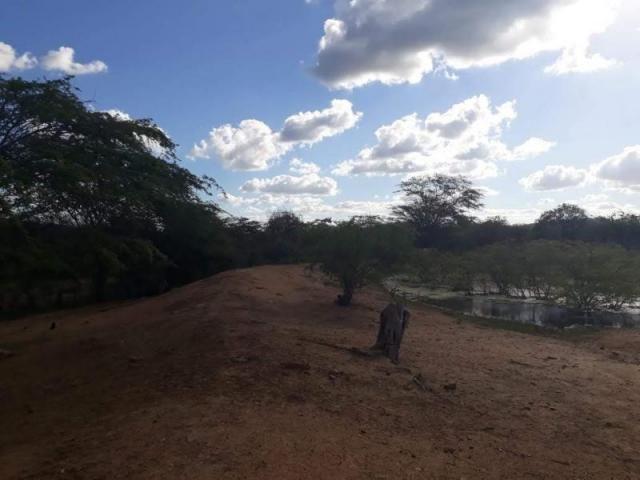Fazenda para venda em santa cruz do capibaribe, centro - Foto 5