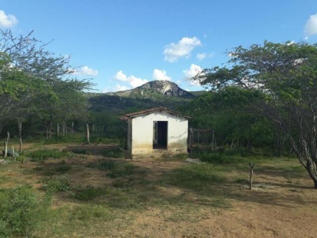 Fazenda para venda em santa cruz do capibaribe, centro - Foto 11