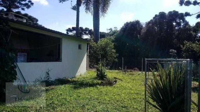 Chácara rural à venda, Campo Largo da Roseira, São José dos Pinhais. - Foto 11