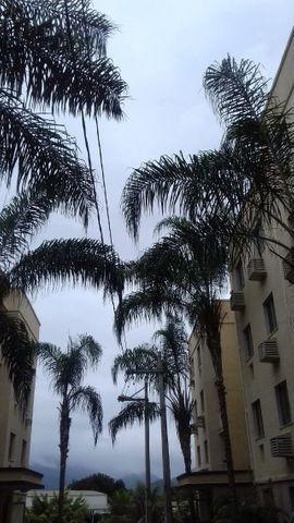 Ótimo apartamento em Campo Grande-2 quartos-aceito terreno, loja ou veículo como entrada - Foto 19