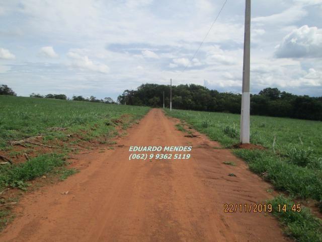 Oportunidade de adquirir sua Chácara de lazer c/ água a 1 km de Gameleira de GO - Foto 9