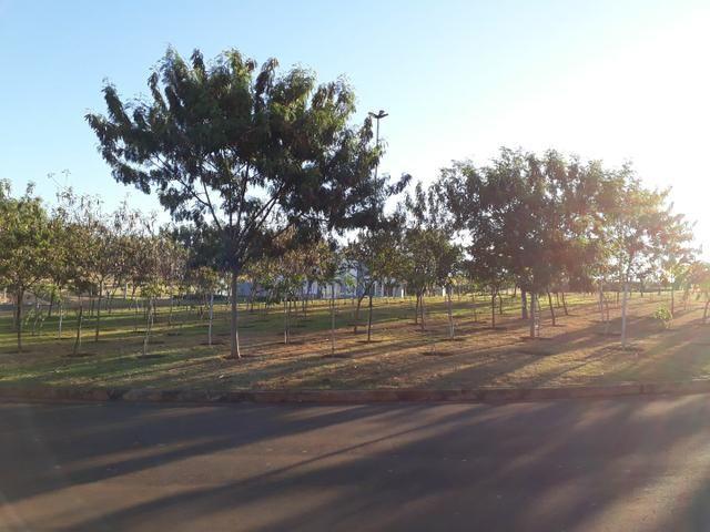Terreno/lote no Damha Fit Quitado - Foto 6