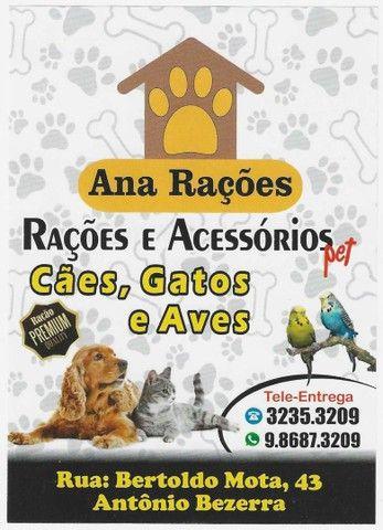 Sanitário para cachorros/cadelas - Foto 2