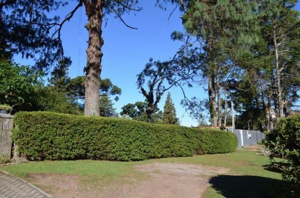 Terreno à venda, 812 m² por R$ 3.100.000,00 - Centro - Gramado/RS - Foto 4