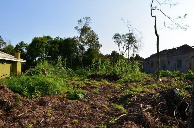 Terreno residencial à venda, vale dos pinheiros, gramado. - Foto 4