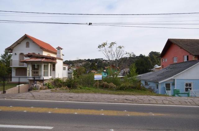 Terreno residencial à venda, são josé, canela. - Foto 3