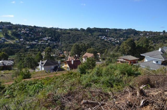 Terreno residencial à venda, vale das colinas, gramado. - Foto 5