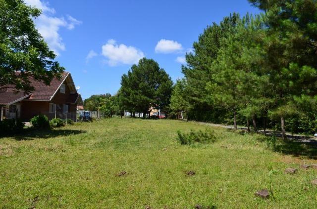 Terreno à venda, 3945 m² por R$ 3.500.000,00 - Centro - Canela/RS - Foto 12