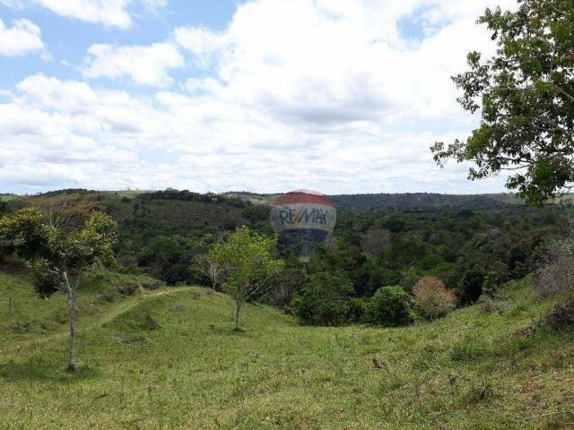 Fazenda à venda em Porto Seguro (Vera Cruz), Bahia - Foto 19