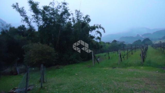 Chácara à venda em Faria lemos, Bento gonçalves cod:9908778 - Foto 5