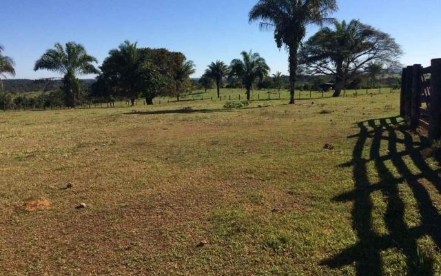 Fazenda em Nova Olímpia MT 550 hectares - Foto 2