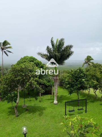 Sítio à venda com 5 dormitórios em Coqueiros, Ceará-mirim cod:767995 - Foto 9