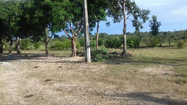 Vendo Sitio / Chácara 72 hectares, Pecuária ou lavoura, Casa, energia, Agua, Nobres - Foto 6