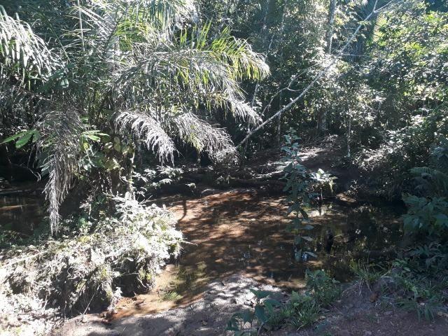Fazenda de 785 hectares em Rosário Oeste MT - Foto 16