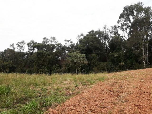 Ref. 2518 Excelente terreno para formar chácara, contendo 46.270,34 m² - Foto 9