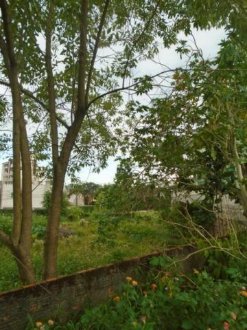 Terreno para alugar em Santo antonio, Joinville cod:07792.001