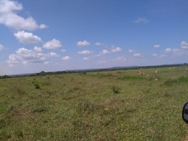 Fazenda em paranatinga - Foto 4