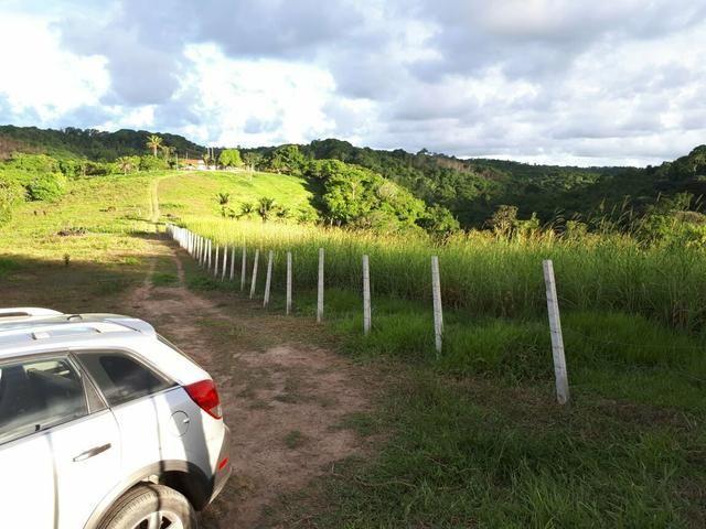 Sítio com 11.67 hectares em Igarassu/PE - Foto 5