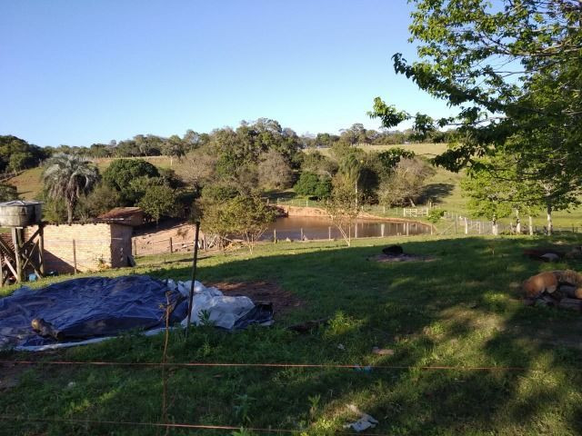 Velleda oferece sítio 3 hectares, 3 dormitórios, horta irrigada, 2 piscinas, açude - Foto 10