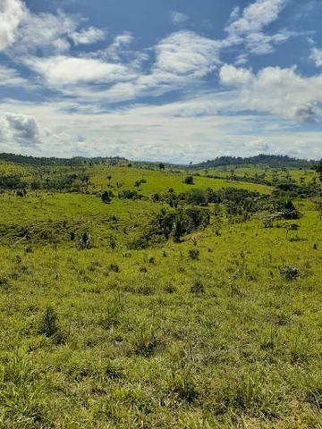 Venda fazenda 20 alqueires localizada 5 km da vila Paulo fonteles - Foto 7