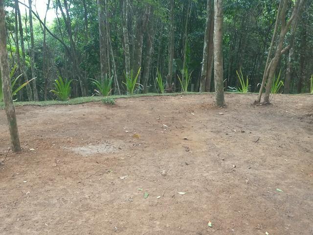 Lindo Terreno em meio à Natureza no bairro Fazenda - Foto 12