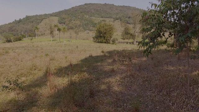 Sítio em Santo Antônio da Patrulha 10 Hectares. Peça o Vídeo Aéreo - Foto 5