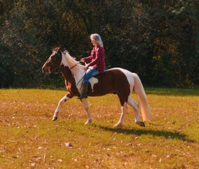 Lindo cavalo Tubiano - Foto 2
