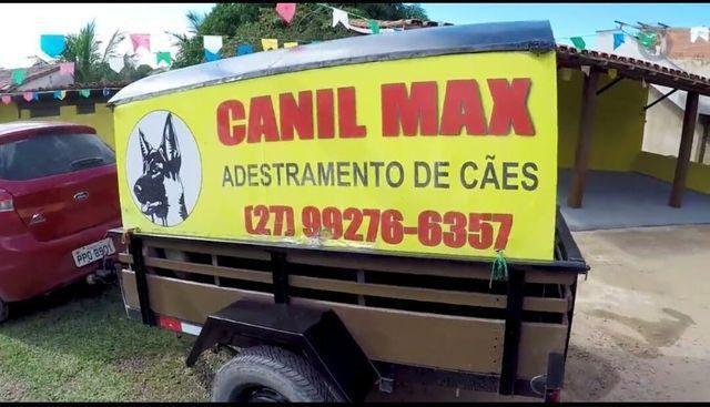 Canil max - Foto 3