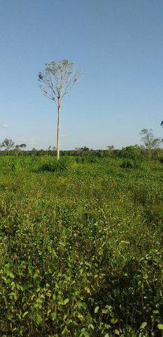 Terreno na área rural - Foto 3