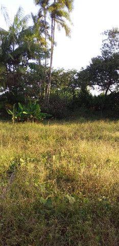 Terreno na área rural - Foto 2