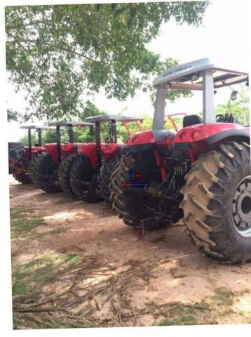 Belíssima fazenda a venda na divisa de Rondônia com o estado de mato grosso - Foto 16