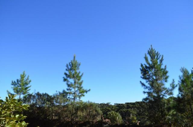 Terreno à venda, 831 m² por r$ 290.000,00 - mato queimado - gramado/rs - Foto 12